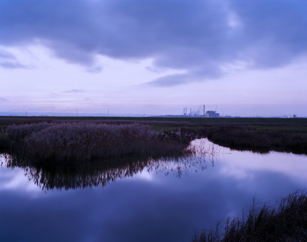 Elmley Nature Reserve, Isle of Sheppey, C-Type Hand Printed 40 x 31in / 102 x 79 cm (Edition of 30)