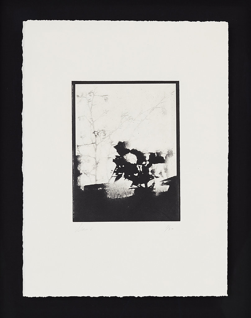 Solar V - Solar Plate Intaglio Print on Somerset Paper  - 49.5cms x 40.0cms - Edition of 30 - £330.00 Framed